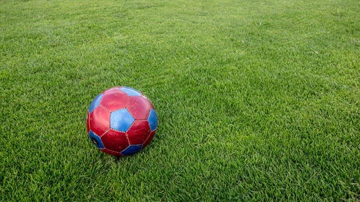 Major sports complex upgrade kicks off in Coolum
