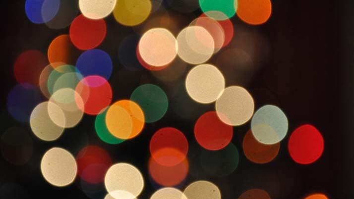Christmas Tree Trail lights up the Sunshine Coast
