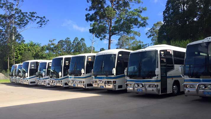Kangaroo Bus Lines expands to the Sunshine Coast