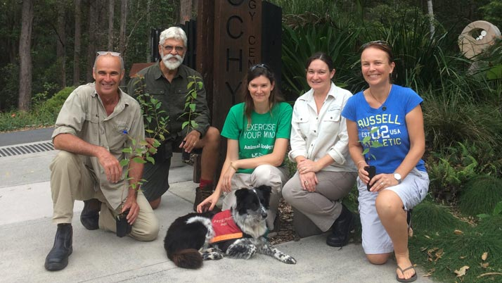 Sunshine Coast community support for koala conservation