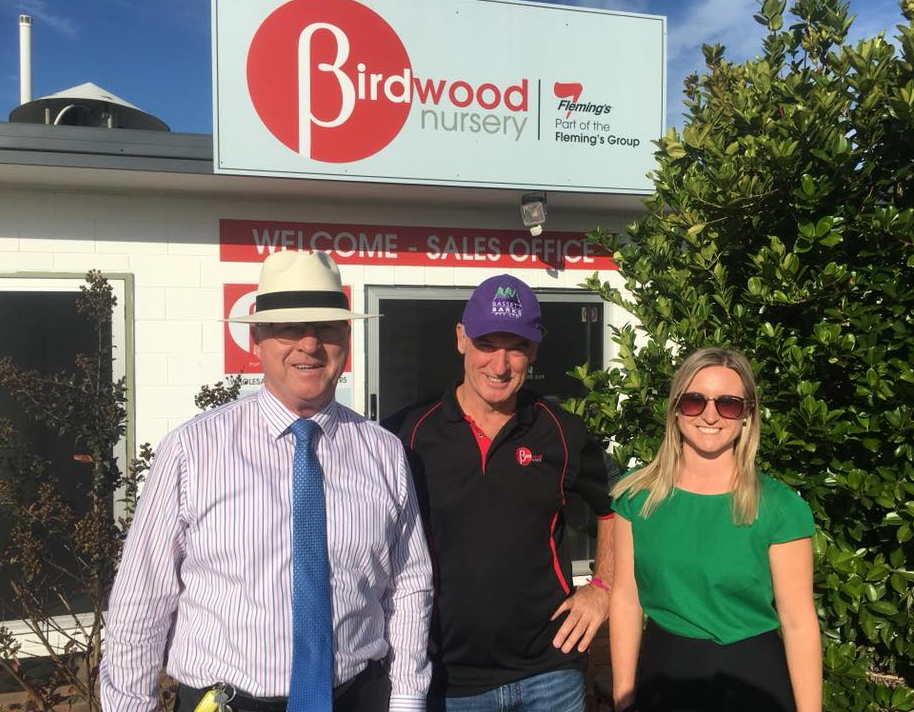 Visit to Birdwood Nursery in Woombye